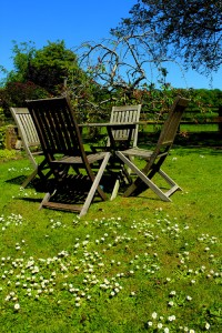 Wrinke Mead Self Catering Cottage Garden, Wells